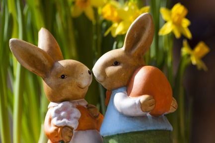 easter-bunny-easter-rabbit-bunny-couple-69816 (1)
